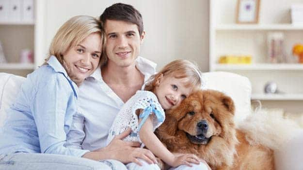 Wills & Trusts dog-young-family Direct Wills Cleveleys